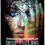 Deep Feeling by Fran-q Toro programa 6 CRACK FM