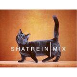 SHATREIN / BDAY MIX // Cobb