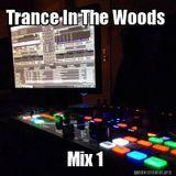 Trance In The Woods Mix 1 (Trance / Progressive Mix)