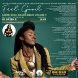 Feel Good Reggae Mix Hosted By Jah9 - Satori High Grade Blend V.9 Dj Green B