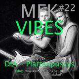 MFK VIBES #22 DIA - Plattenpussys // 03.02.2016
