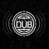 Efecto Dub Vol. 21