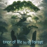 Shamanic Forest Chants 13-06-2018