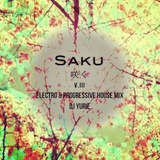 Saku V.III (Electro & Progressive House Mix)