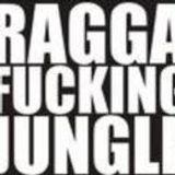 Selecta T - Ragga fuckin Jungle pt. II