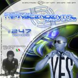 David Saints pres. Transcendental Radio Show #247 (20/04/2012)
