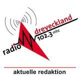 Act Up-Paris sur Radio Dreyeckland 23 avril 2013 (français)