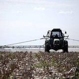 Mauricio Cornaglia sobre proyectos de Ley de Agroquímicos, agroecología y erradicación de silos