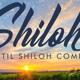 Until Shiloh Comes - Audio