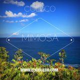 Mimosa Mix