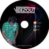 VIBE2OUT - In the mix #1