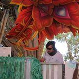 Dylan Griffin DJ Set Rainbow Serpent 2014