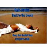 Back To The Beach Chill 1/22/2015