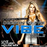 Deep Into The Vibe Vol. 2