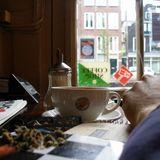Amsterdam Dreaming Pt 2: Summer Daze