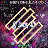 Dinglejam Radio #170 (DJ Sven XD Guest Mix on BPM Dance Radio)