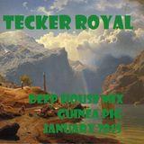 Tecker Royal by Guinea Pig - January 2015