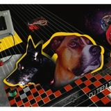 DTMT - The Dogtape -