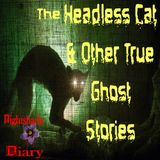 The Headless Cat & Other True Ghost Stories   Podcast