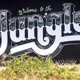JUNGLE ROOTS 004 - DJEZB2014