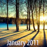 1.17.2011 Tan Horizon Shine