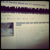 Risk of Electric Shock vol. 17. mixed by GUGU (2013.06.25)