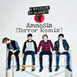 5 Seconds Of Summer - Amnesia (Terror Remix)
