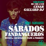 César Gallard @ Wine Fandango 30-01-16