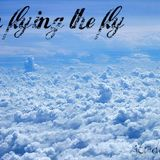 i´m flying the fly volando voy volando me quedo