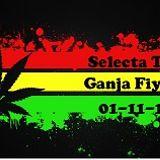 Selecta T - Ganja Fiyah