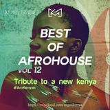 The Best Of AfroHouse Vol.12 - Tribute to a new Kenya by MGM