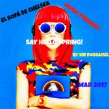 SAY...HELLO SPRING! BY MR ROSSAINZ MAR 2017
