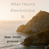 After Hours Electronica 16 \\ mixed by Freeze
