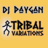 DJ Paygan - Tribal Variations