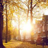 Sunny (Autumn mixtape 1020)