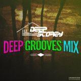 Deep Storey Deep Grooves Mix - 30mins Deep House