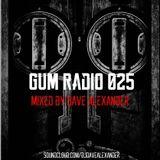 GUM Radio 025