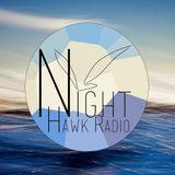 Night Hawk Radio Yearmix 2013