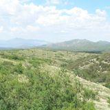 M. L. 4-5-2014 - cumbia, huasteca y mas