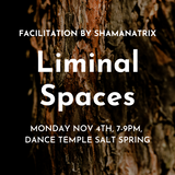 Liminal Spaces ~ Shamanatrix Live at Dance Temple Salt Spring Island