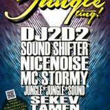 Jungle Ting! - Oct 2013 w/ DJ2D2 - DJ2D2 Dj Set + MC STORMY