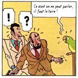 Commentaires : Tintin et les philosophes (2005)