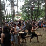 Amiguito - Fusion Festival 2014 Rootsbase (28.6.14 morning set)