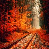 Norby - Autumn Mix (October Promo)