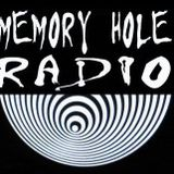 Memory Hole Radio - May 23, 2010 (DEBUT)