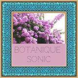 Botanique Sonic 14/12/2017