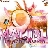 Malibu Beach Session