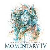 Fluidnation / Momentary IV