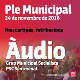 Ple Municipal del 24 de novembre de 2016