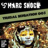 Tribal Sensation 003